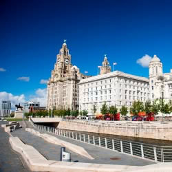 Liverpool_Landmarks_Liver-Building_Shutterstock-4-250x250